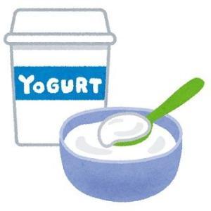 【健康ダイエット】今回のダイエットでは腸内の善玉菌を増やすぞ