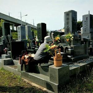 今年のお墓参りは義姉と一緒 / ランチは海鮮丸のお寿司とオードブル
