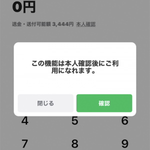 あっ!、友達に500円返すの、忘れた~~。しばらく会えないのに。ということで、LINEペイの送金にチャレンジしてみた。