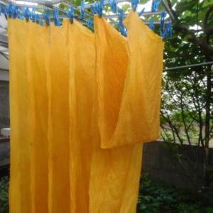 黄色〜〜〜!?