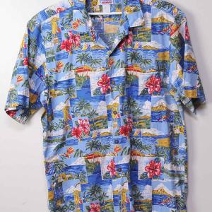 ハイビスカスとハワイの風景・Hibiscus and Hawaii scene