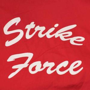 ストライク フォース・Strike Force