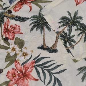 ハイビスカス プルメリア ヤシの木・Hibiscus Plumeria Palm Tree