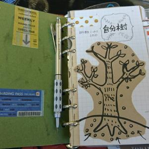 自分樹の育て方
