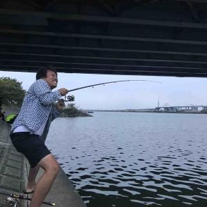 平井大橋:うなぎは上がらなかったけどシーバス/ハゼは上がる