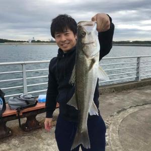 検見川浜シーバス:中潮入れ食いからのランカーゲット