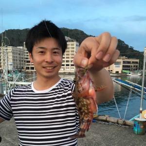 小湊漁港:奇跡のカサゴ