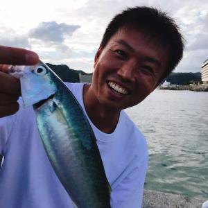 小湊港:サバ3匹/2020房総釣り紀行1日目