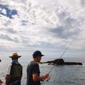 鴨川漁港:鰯(いわし)10匹くらい/房総釣り紀行2020 - 2日目-