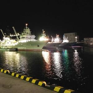 茨城県大津港:タコ&カレイを狙う