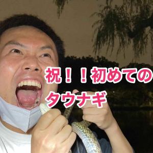 祝:三年越しのタウナギ with猫ひさしさん