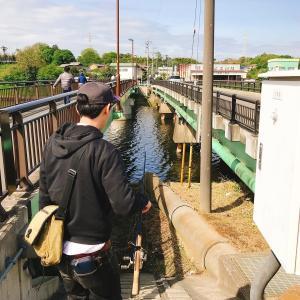 千葉県新川で20年来のバス師とブラックバスを狙う