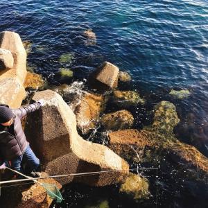 冬の浜行川港でウツボを爆釣した話