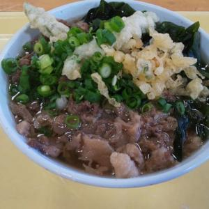 うどん処 しんせい/高松市新田町/肉ぶっかけ・タコの天ぷらがオススメ