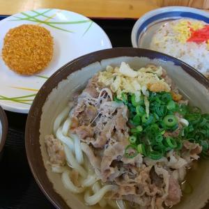 天狗/高松市小村町/肉がてんこ盛りの肉うどんはコスパ抜群です!!
