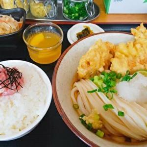 麦香(ばくか)/丸亀市綾歌町/店主こだわりの国産小麦を100%使用した麺がとにかくうますぎる