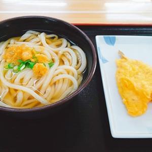 亀城庵 志度店 /さぬき市志度/2日間熟成されたうどんに豊富なサイドメニューが魅力のお店