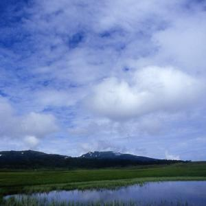 第436回  雨竜沼湿原