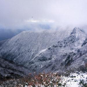 第458回  巻機山 その2(雪の下山)