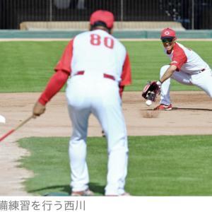 広島・西川、三塁の練習を再開 今季、外野で定位置獲得、本格的な転向には否定的