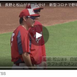 広島・カープ紅白戦 長野と松山がチーム分け 新型コロナで野球メキシコ代表と親善試合中止