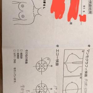 乳腺症の定期検査 ~2019年9月~