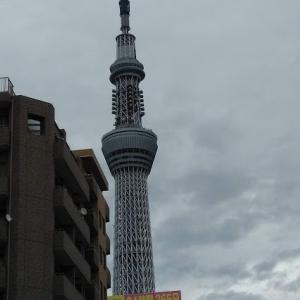能力のない中年の転職 採用基準が低いが稼げる 東京のタクシードライバーになってのブログ