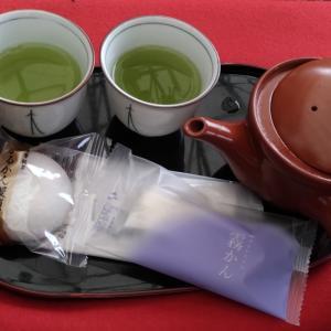 【鹿児島】第1回 令和新茶まつりに行ってきました!(日常ブログ)