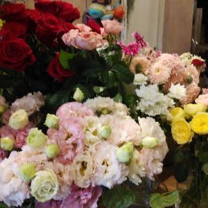 大阪府福島の花屋さんで情報医療ネスプロビジョン