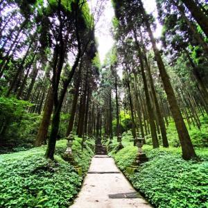 高森町にある上色見熊野座神社に行ってきた