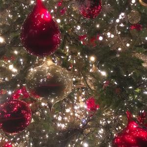 ALONE EVE~クリスマスの想い出