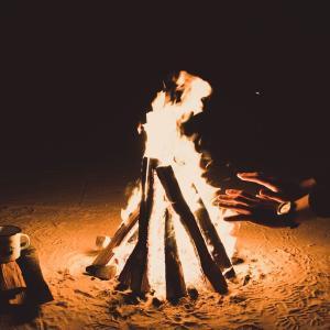 ソロキャンプがすごく面白い!人気沸騰中のその理由をご紹介!