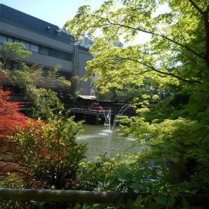 神戸の生田神社のほのぼのとする生田の池