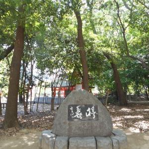 神戸の生田神社の癒しの生田の森
