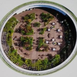 神戸国際会館の屋上庭園「そらガーデン」