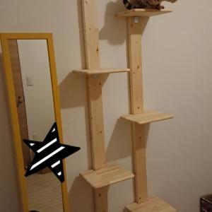 てづくりキャットタワー