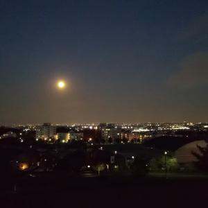 (リーディング編)双子座満月からのメッセージ✨今のあなたへ必要なメッセージ