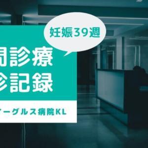 【臨月】グレンイーグルス病院での夜間診療受診レポート〜受診の流れやNSTの料金等〜