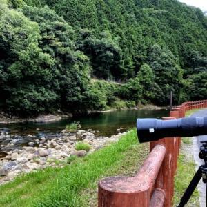 奈良のお山で