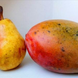 マンゴーの季節感