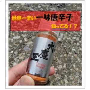 激辛好き必見!【買える】オススメ激辛商品5撰