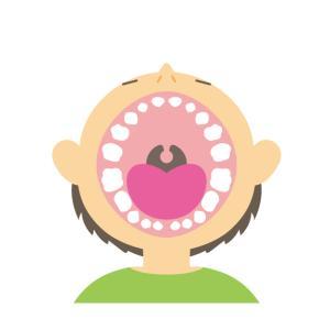 前歯と奥歯とアスパラガス。
