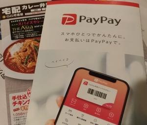 【PayPay使い切りたい】残高で買い物ペイペイジャンボ利用で