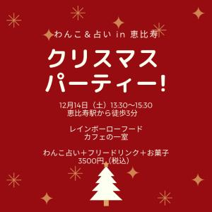 【わんことイベント】クリスマスパーティー×わんこ占い