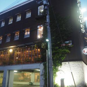 【目黒区】店内わんこOKのアンティークショップ GEOGRAPHICA(ジェオグラフィカ) 東京 目黒通り