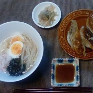 手作り塩ラーメン&餃子