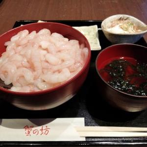 定額給付金10万円で外食するシリーズその20 三国漁港の甘海老てんこ盛り丼
