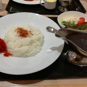 定額給付金10万円で外食するシリーズその35  東洋軒さんのブラックカレー