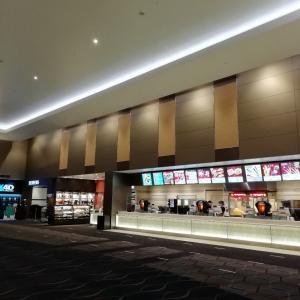 【映画】僕たちの嘘と真実 Documentary of 欅坂46 を鑑賞してきました