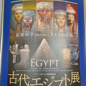 ライデン国立古代博物館所蔵古代エジプト展を見てきました